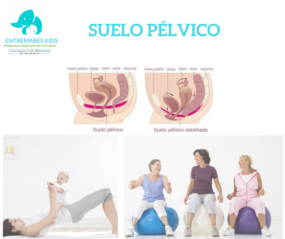 SUELO PeLVICO
