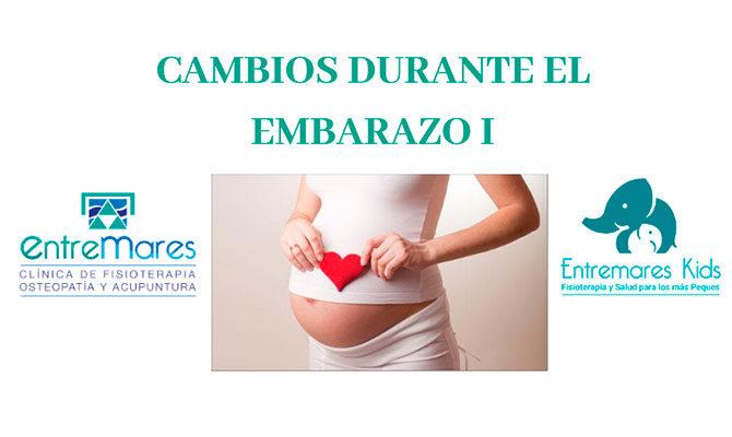 CAMBIOS DURANTE EL EMBARAZO I