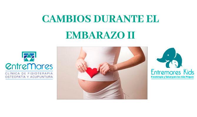 CAMBIOS DURANTE EL EMBARAZO II
